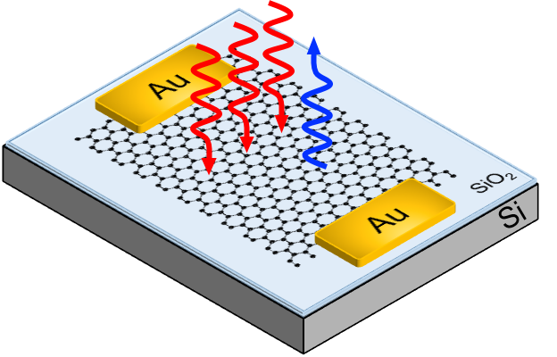 Tunable third harmonic generation in graphene paves the way to high-speed communications